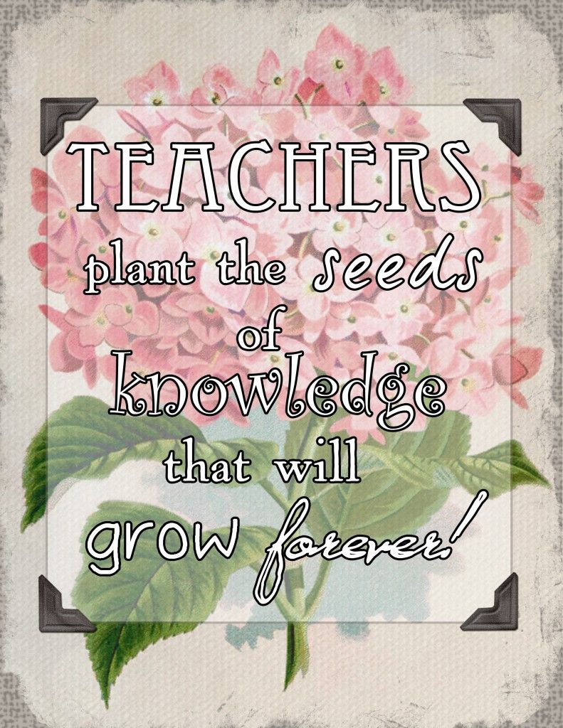 """""""Teachers plant the seeds of knowledge that will grow ..."""