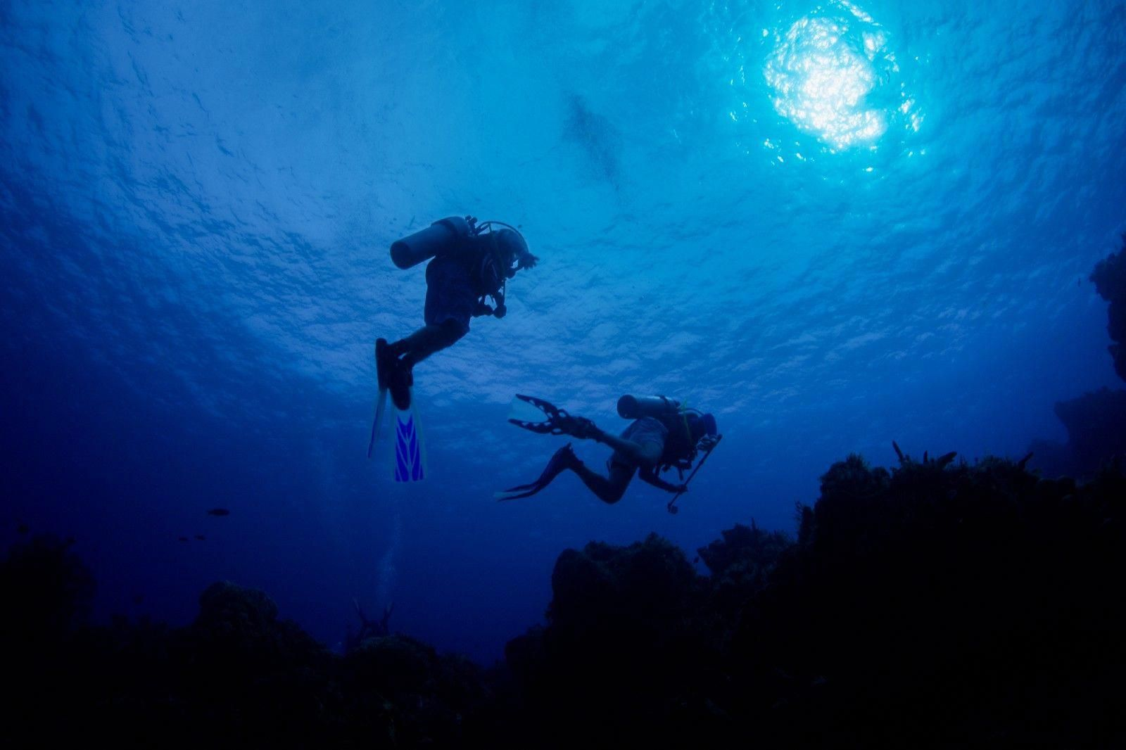 My first underwater photography training experience