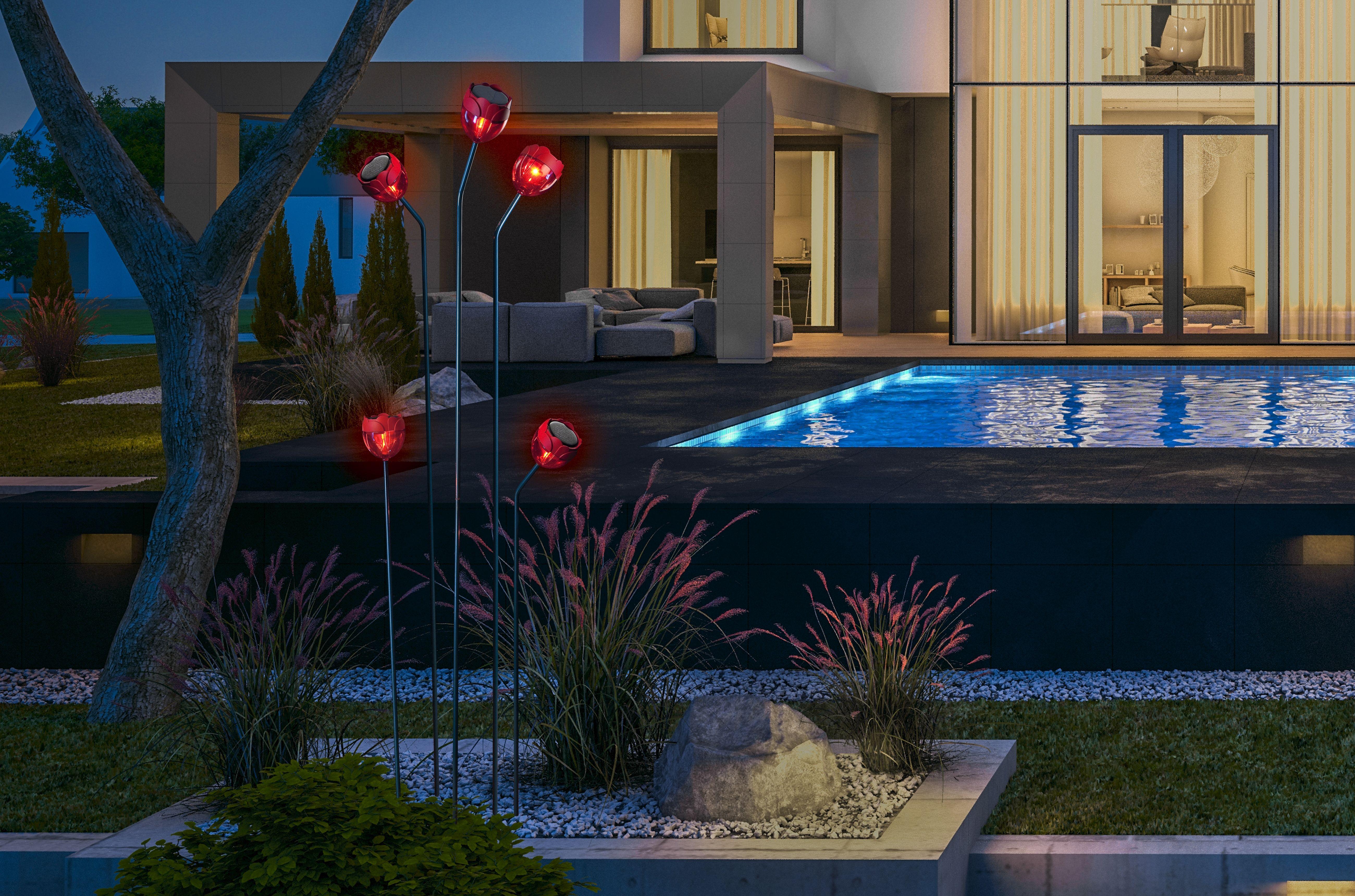 Nortene, FLORE, sujet decoratif solaire inspiré du ...