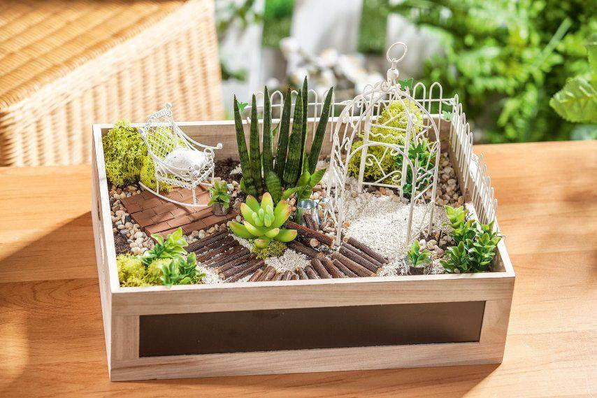 Schaffen Sie Sich Ihren Traumgarten Als Miniatur Das Gestalten Ist Sehr Entspannend Der Entstandene Zauberhafte Mini Ga Mini Garten Holzkisten Miniaturgarten