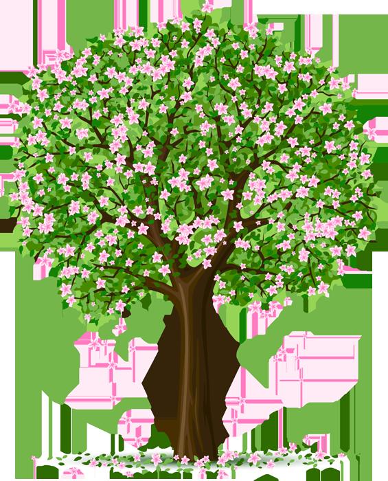 Gemeinsame jahreszeiten baum - Google-Suche   Pflanzen   Bäume zeichnen, Baum &BJ_44