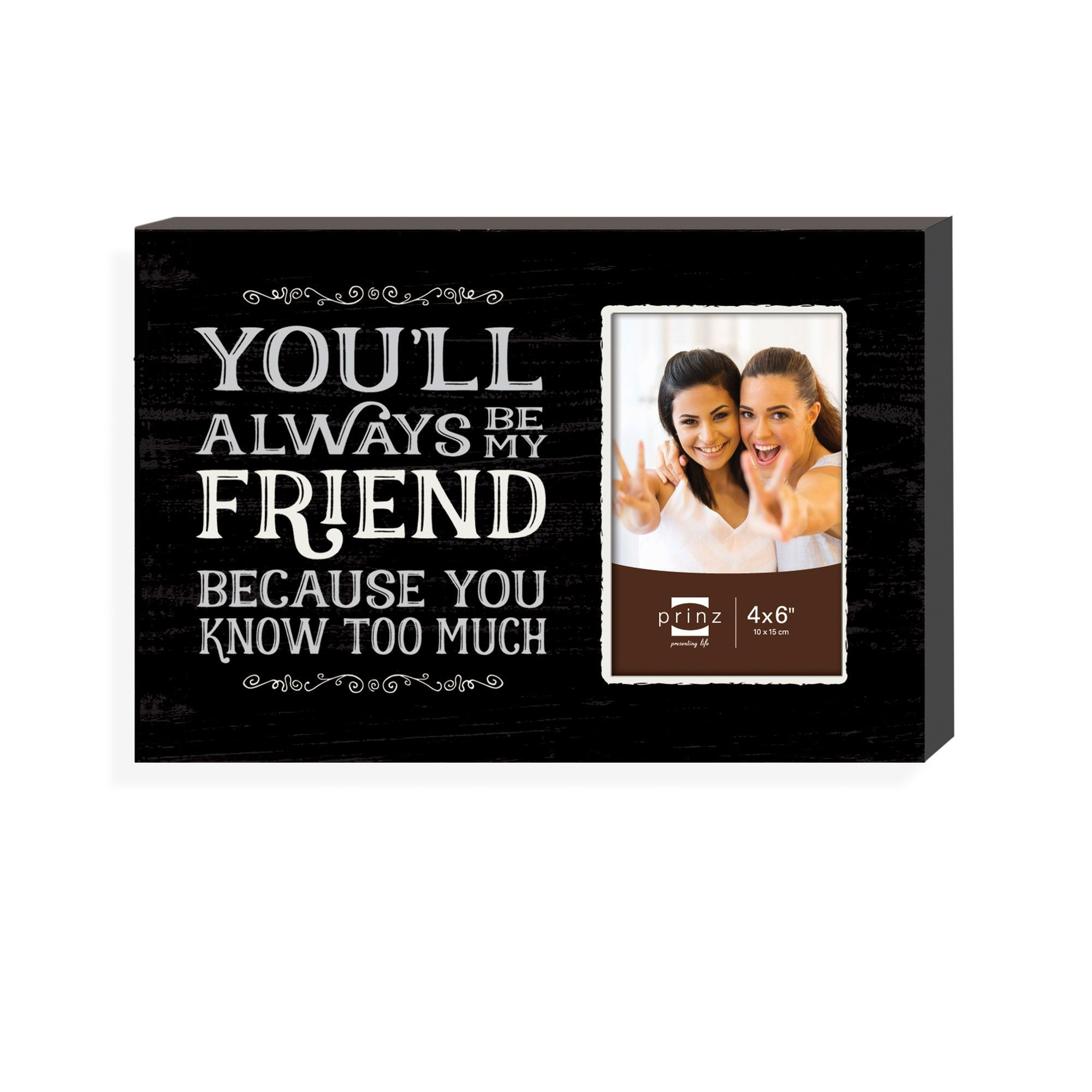 "Humor ""Friend Humor"" Picture Frame"