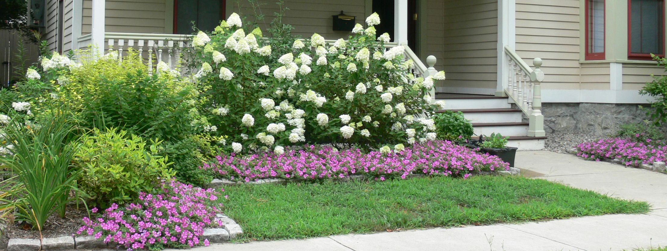 Hydrangeas what 39 s natalie doing curb appeal for Garden designs with hydrangeas