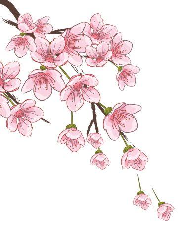 Cherry Blossom Branch Vector Art Illustration Cherry Blossom Art Flower Drawing Blossoms Art