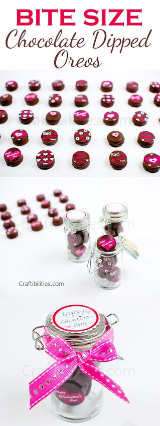 Craftibilities Bite Size Mini Chocolate Dipped Oreos