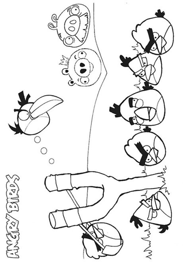 40 Cute Angry Birds Coloring Pages Your Toddler Will Love Bird