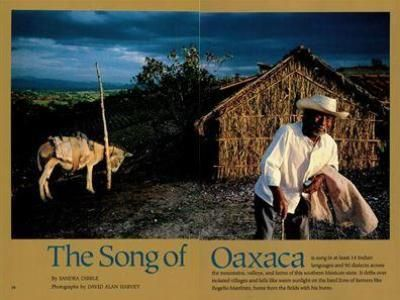 The Song of Oaxaca | National Geographic Magazine