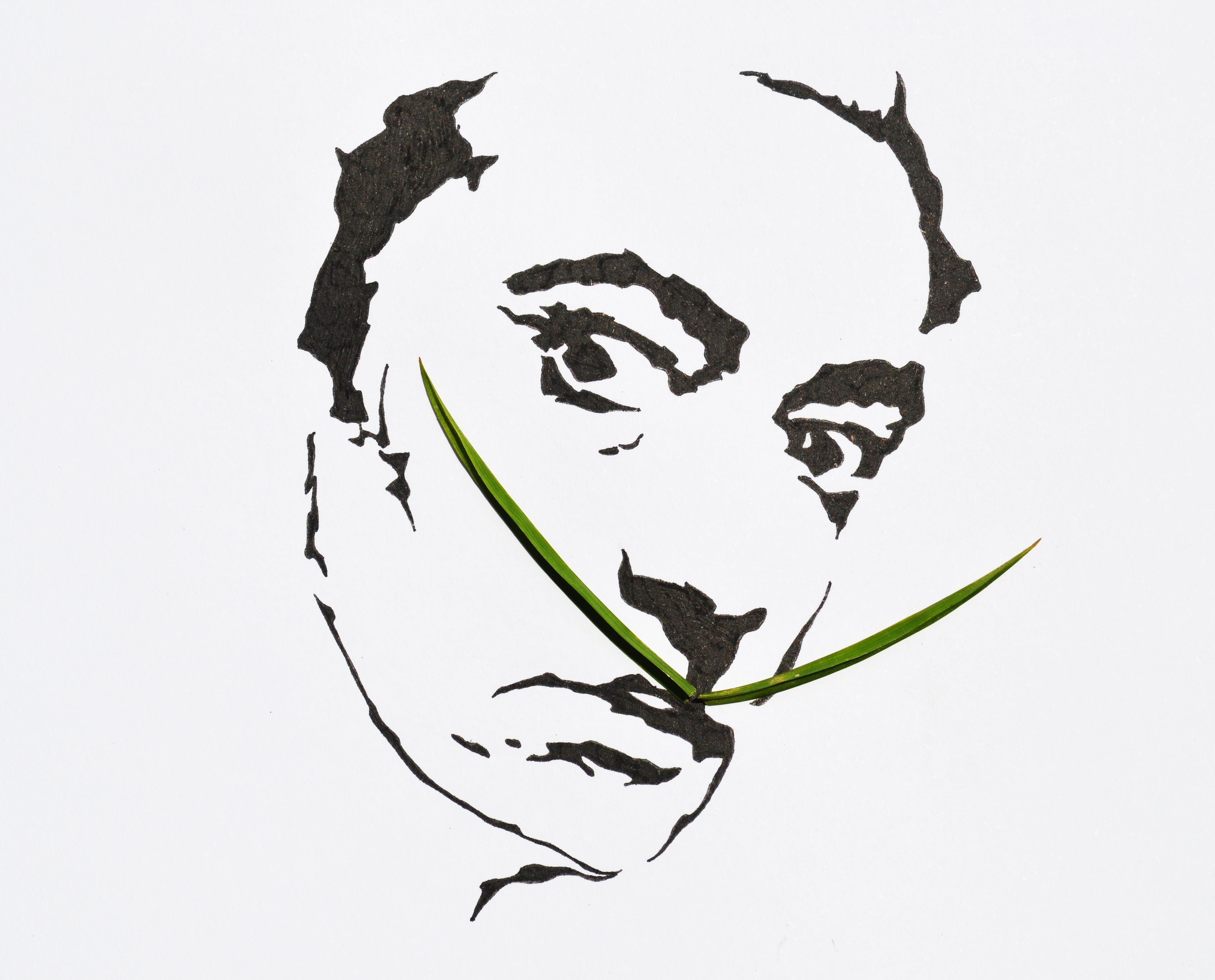 Salvador Dali S Mustache With Images