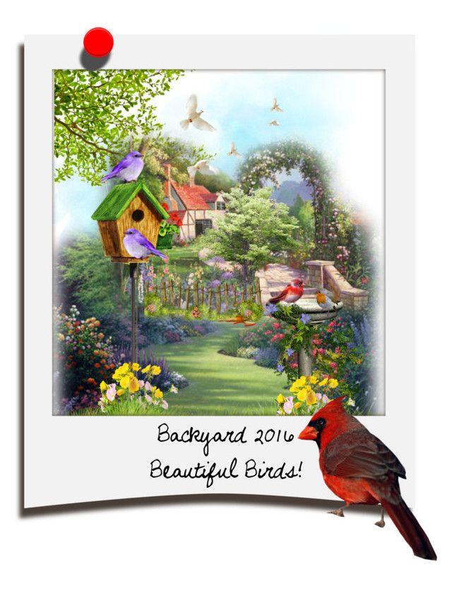 """Beautiful Birds!...by tt"" by fowlerteetee on Polyvore featuring art"