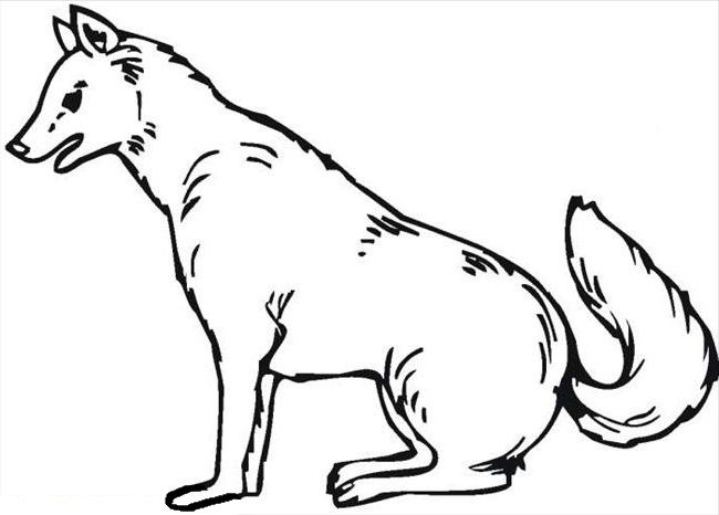 Wolves With Fine Feathers Coloring Pages For Kids Fhj Printable Wolves Coloring Pages For Kids