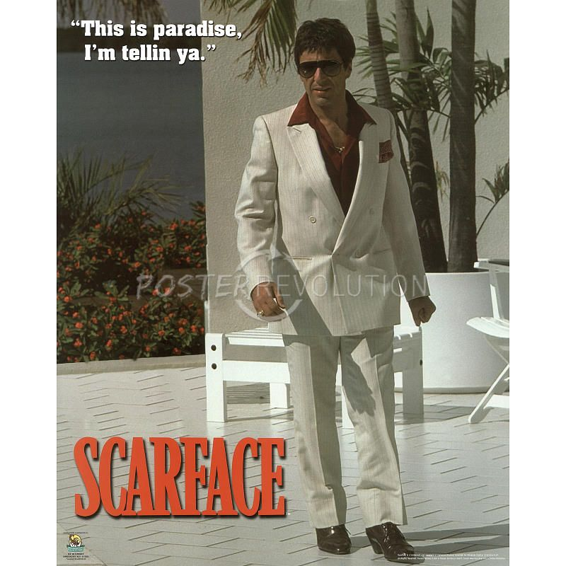 movie analysis on scarface Deconstructing scarface (1983): challenging its cultural perception  this movie is the tragedy of tony montana and perhaps people just ignore the negative side.