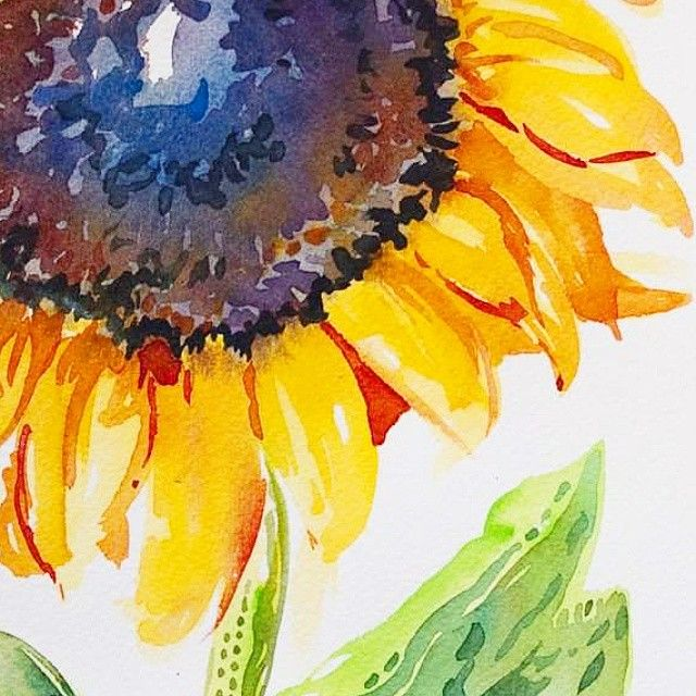 Sunshine On A Rainy Day Watercolor Sunflower Justpaint