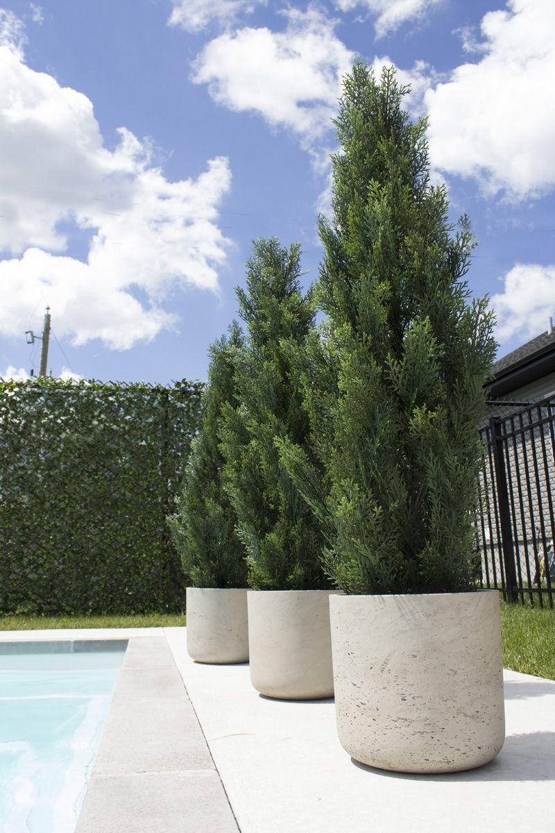 Pin On Planter Pots