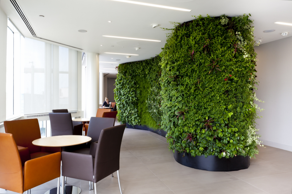 Cool Office Fitouts Google Search Indoor Plants Bedroom