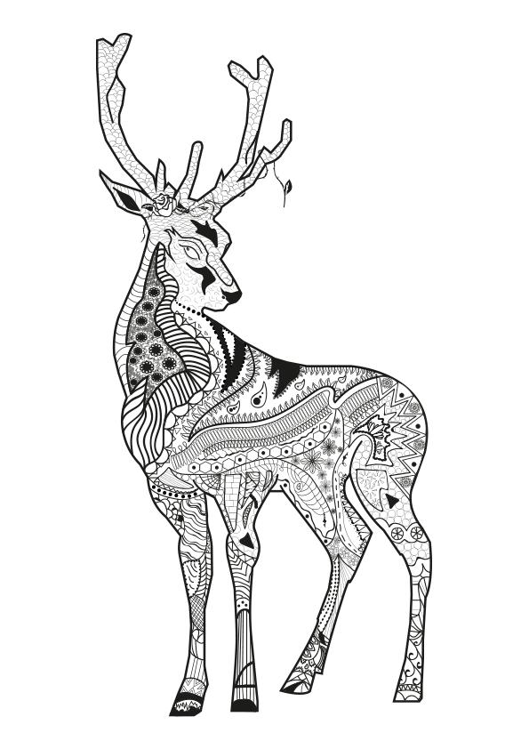 Dibujos Para Colorear Mandala Animales 13 Alucinantes Dibujos Para