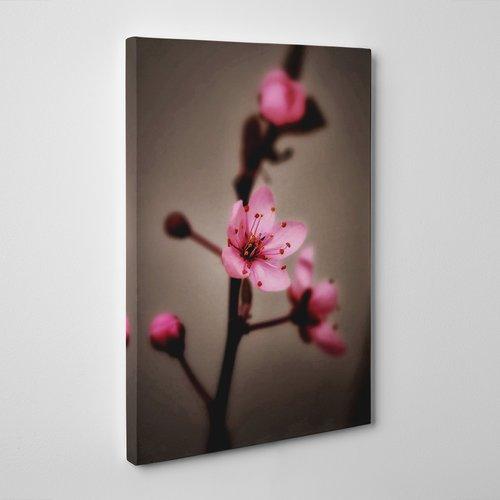 Japanese Cherry Blossom Flower Photographic Print On Canvas Big Box Art Size 60cm H X 40cm W Cherry Blossom Art Cherry Blossom Painting Pink Blossom Tree