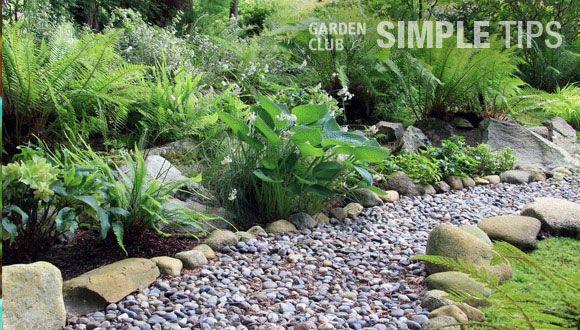 Build a Dry Creek Bed that Rocks | Garden Club #garden