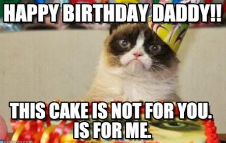 Happy Birthday Cat Meme Grumpy Cat Birthday Cat Birthday Memes Happy Birthday Cat