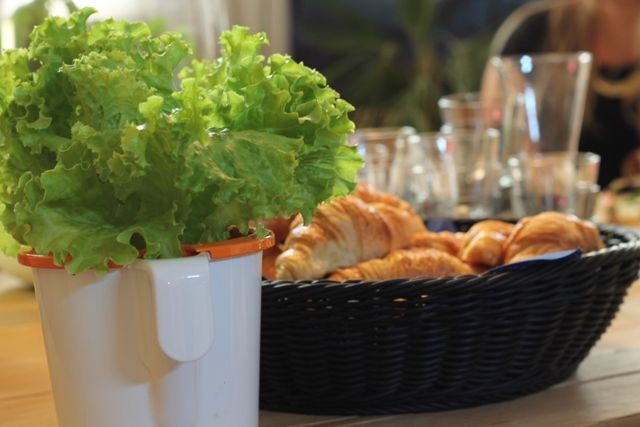 Vihreä aamiaishetki.
