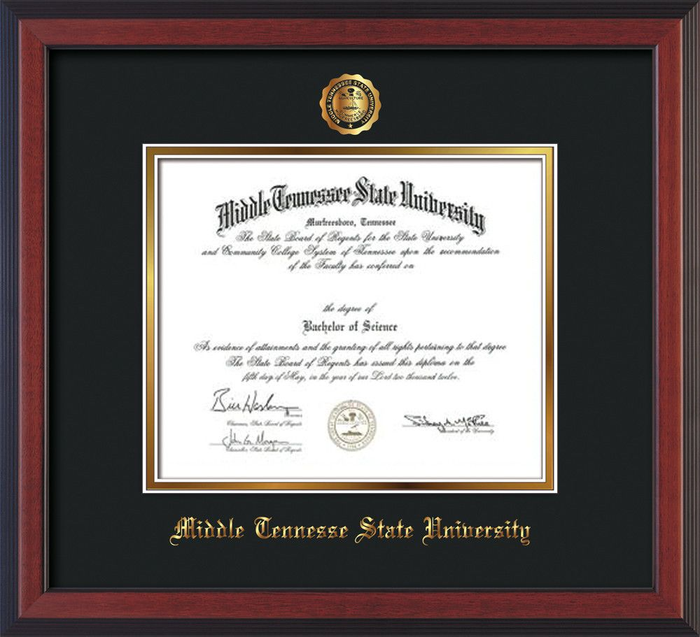 university mtsu university diploma state university tennessee state middle tennessee gold professional professional framing frames graduation