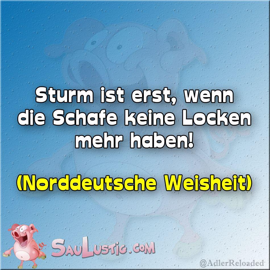 Sturm Ist Erst Lustige Spruche Sturm Lustig