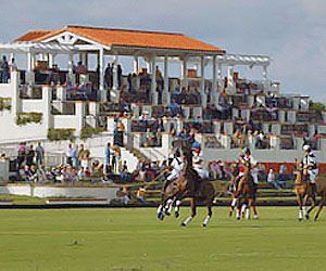 International Polo Club Palm Beach Wellington Florida
