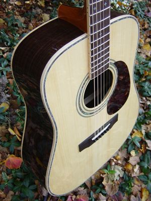 Zager Guitar Reviews Guitar Guitar Reviews Small Guitar