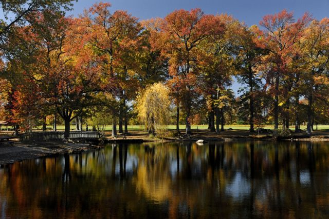 Explore Delaware during the fall season & discover vibrant shades of color. Get weekend getaway travel ideas at http://www.visitdelaware.com/things-to-do/fall-in-delaware. Featured in photo: Bellevue State Park