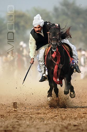 Tent pegging competition. Wonderful shot of horse and rider in motion. & Rajooa Sadaat Faisalabad. Tent pegging competition. Wonderful shot ...