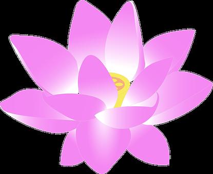 Λουλούδι, Νούφαρο, Κρίνος, Λωτού