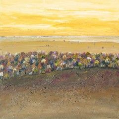 Lyn Franke - Artist - Perth, Western Australia | Land Paintings