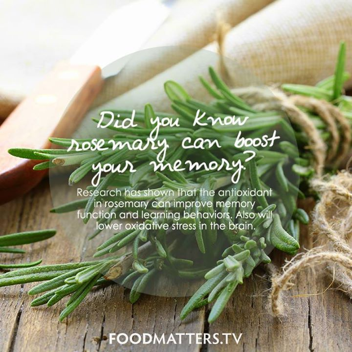 Did you know rosemary can boost your memory? www foodmatters