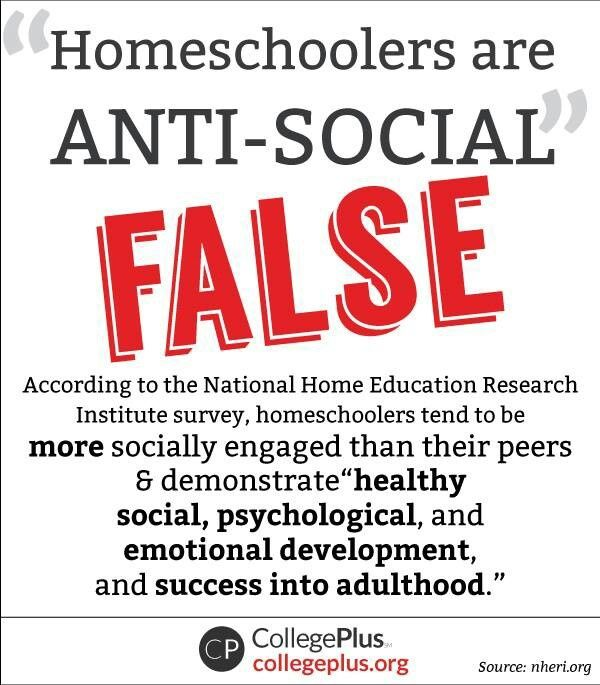 my experience of being homeschooled and education in high school Homeschooling high school educational neglect recognizing a problem how to report support the kids  homeschooling & socialization  that those who had fewer social opportunities while being homeschooled expressed a less favorable attitude toward their homeschool experiences than did those who had a greater number of social.