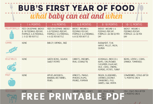 Baby Size Chart Template Featured Image For The Baby Food Chart PDF