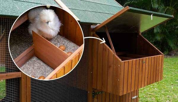 The Mansion™ Coop | Walk in chicken coop, Chicken coop ...