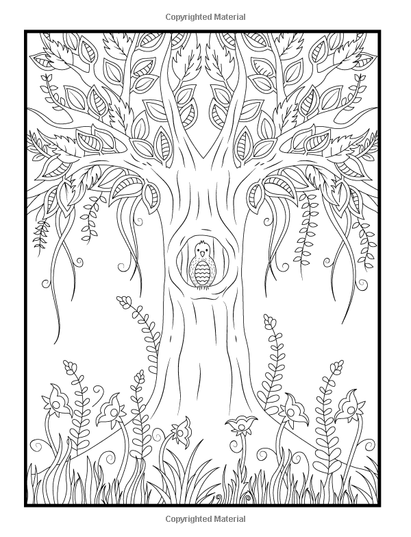 AmazonSmile: Magical Forest: An Adult Coloring Book with Enchanted ...