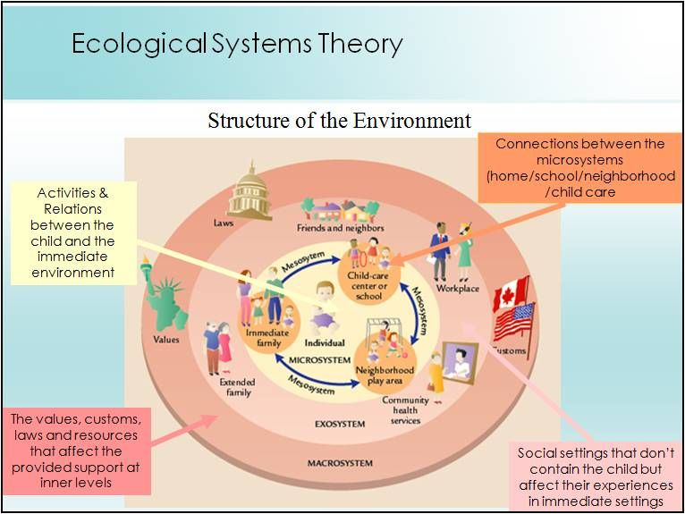 bronfenbrenners ecological systems theory on child development essay Bronfenbrenner's bio-ecological model for human development find this pin and more on clinical info by elizabeth lambird urie bronfenbrenner ecological theory essays this paper will focus on the various human development theories and then try to connect them with public health issues.
