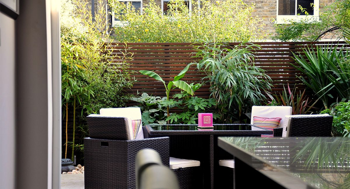 Urban Jungle Garden | Jungle gardens, Bamboo landscape ...