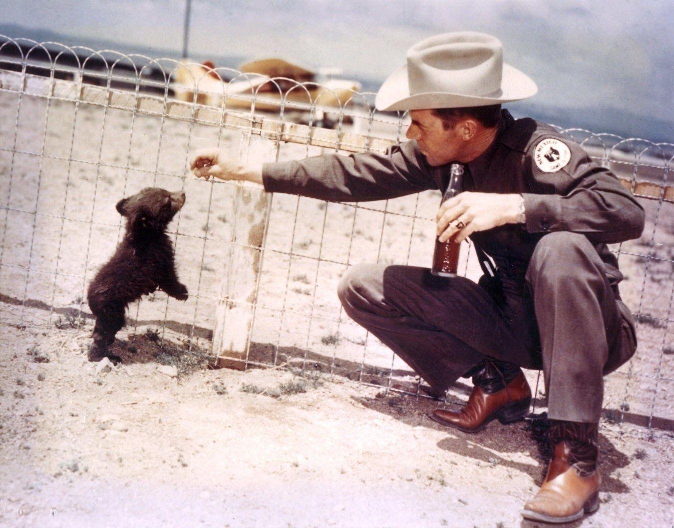 1950: El oficial Ray Bell con el oso Smokey (mascota del programa de prevención de incendios) Smokey fue llamado originalmente Hot Food Teddy y fue cuidado por Bell después de haber sido rescatado de un incendio en el Parque Nacional Lincoln