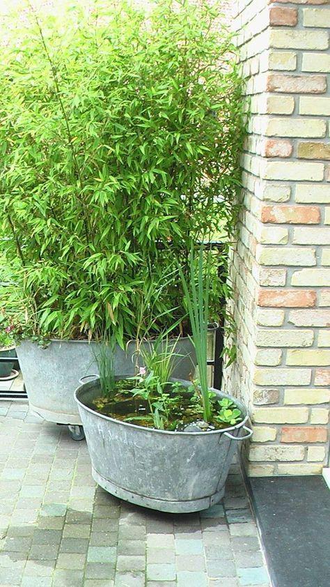 Quelques idées d\'aménagement déco jardin à base de bassine Zinc ...