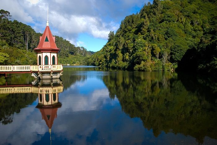 Zealandia - Lower Lake and Valve Tower