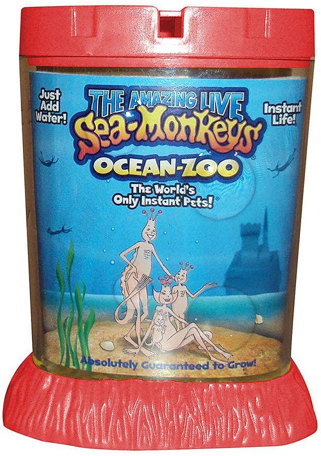 Schylling SeaMonkeys Ocean Zoo Sponsored SeaSchylling