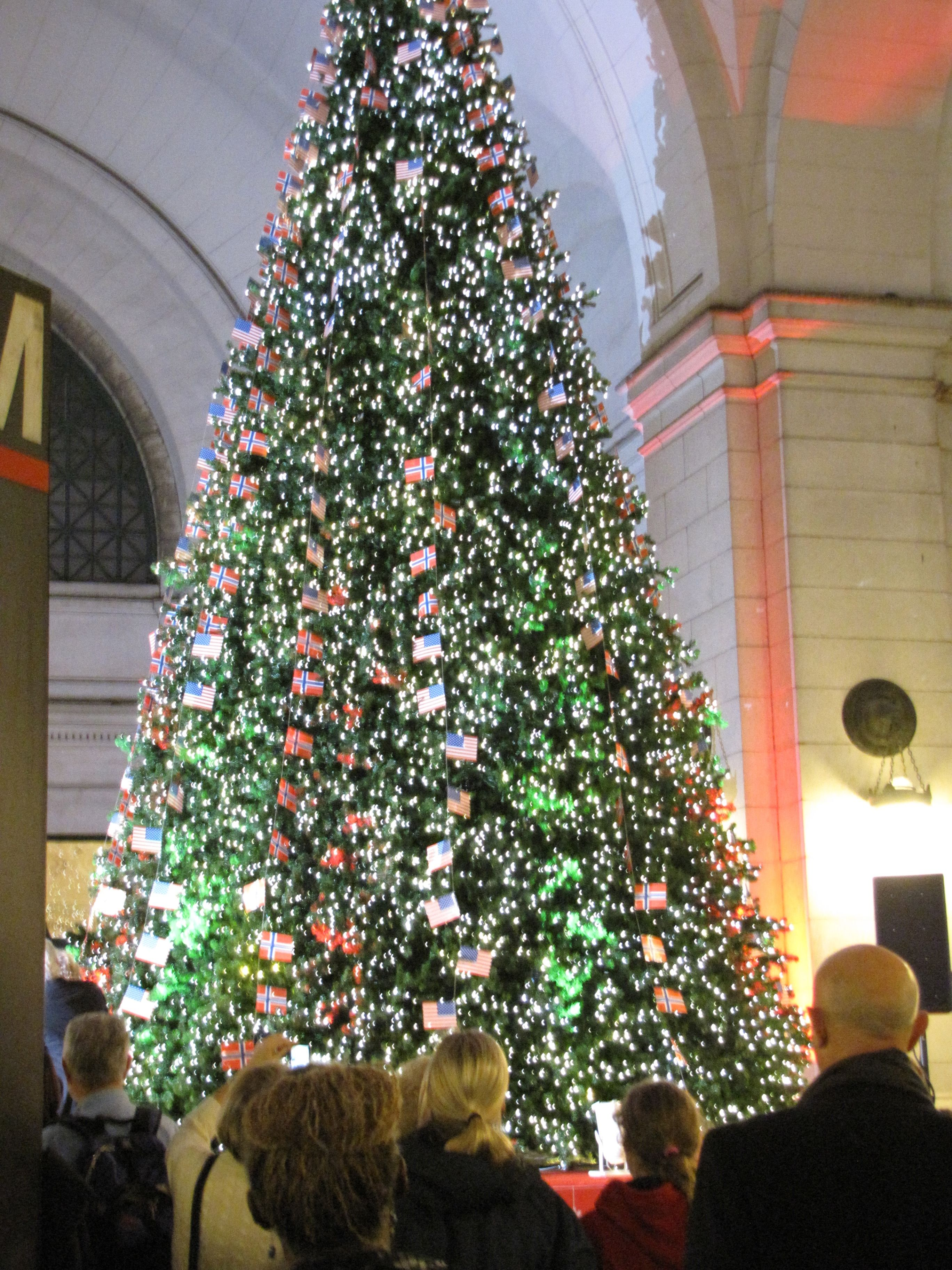 Norwegian Christmas Tree at Union Station, DC | Norway! | Pinterest ...