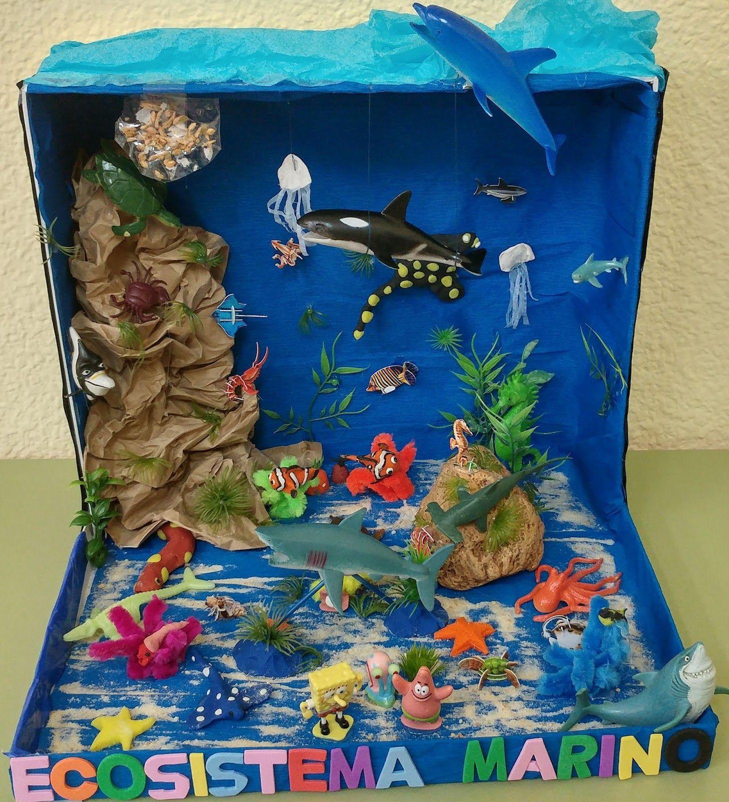 Ecosistema acuatico en una caja resultados de yahoo for Como hacer una granja de peces