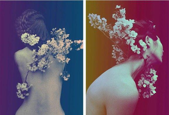 Floral Portraits 6 Surreal Floral Portraits by Sayaka Maruyama