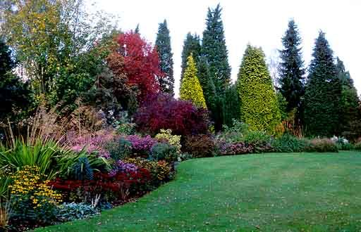 Great Comp Gardens kent | English gardens | Pinterest | Woodland ...