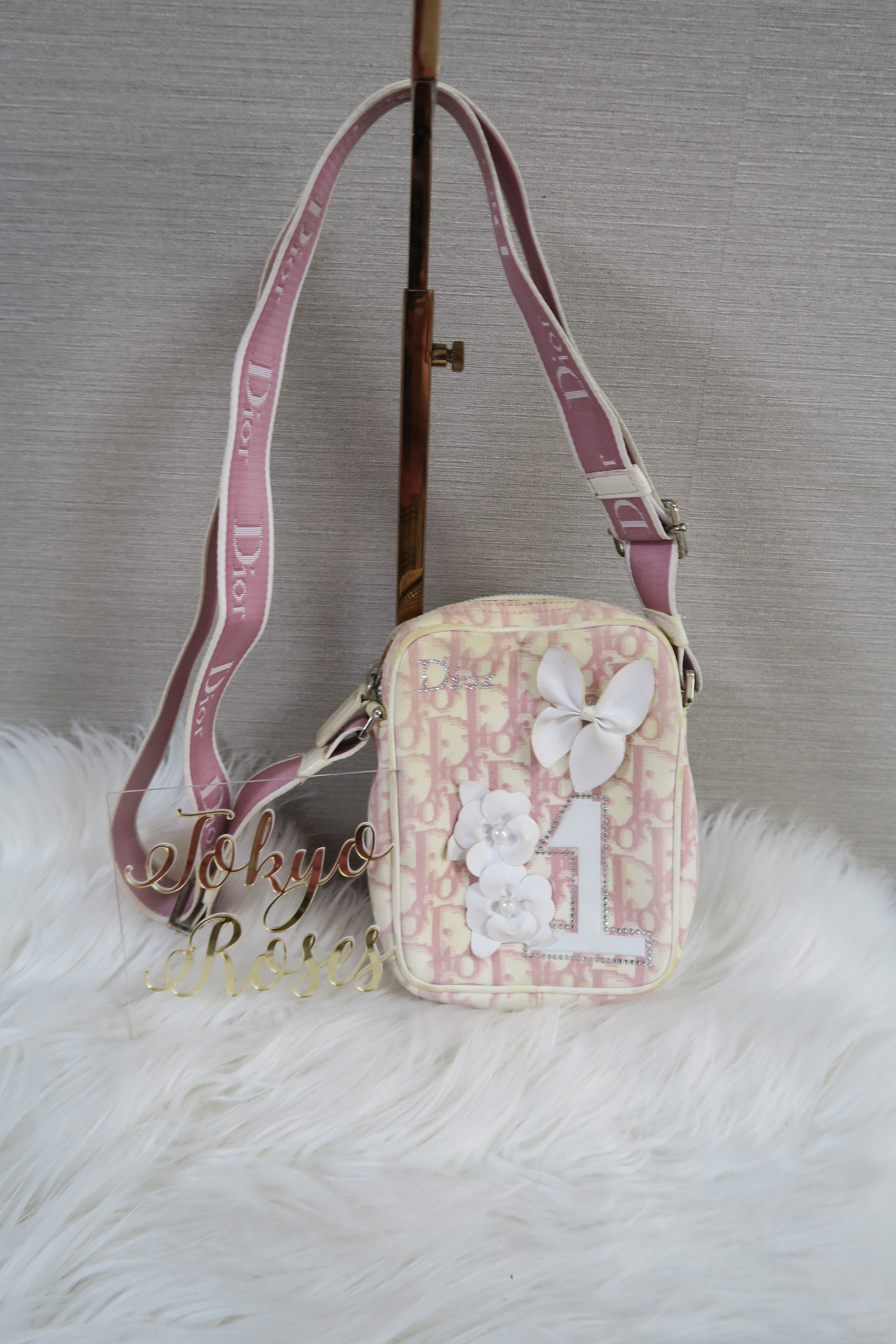 50bbdf21ef58 Christian Dior Pink Trotter Girly Crossbody Bag Monogram in 2019 ...