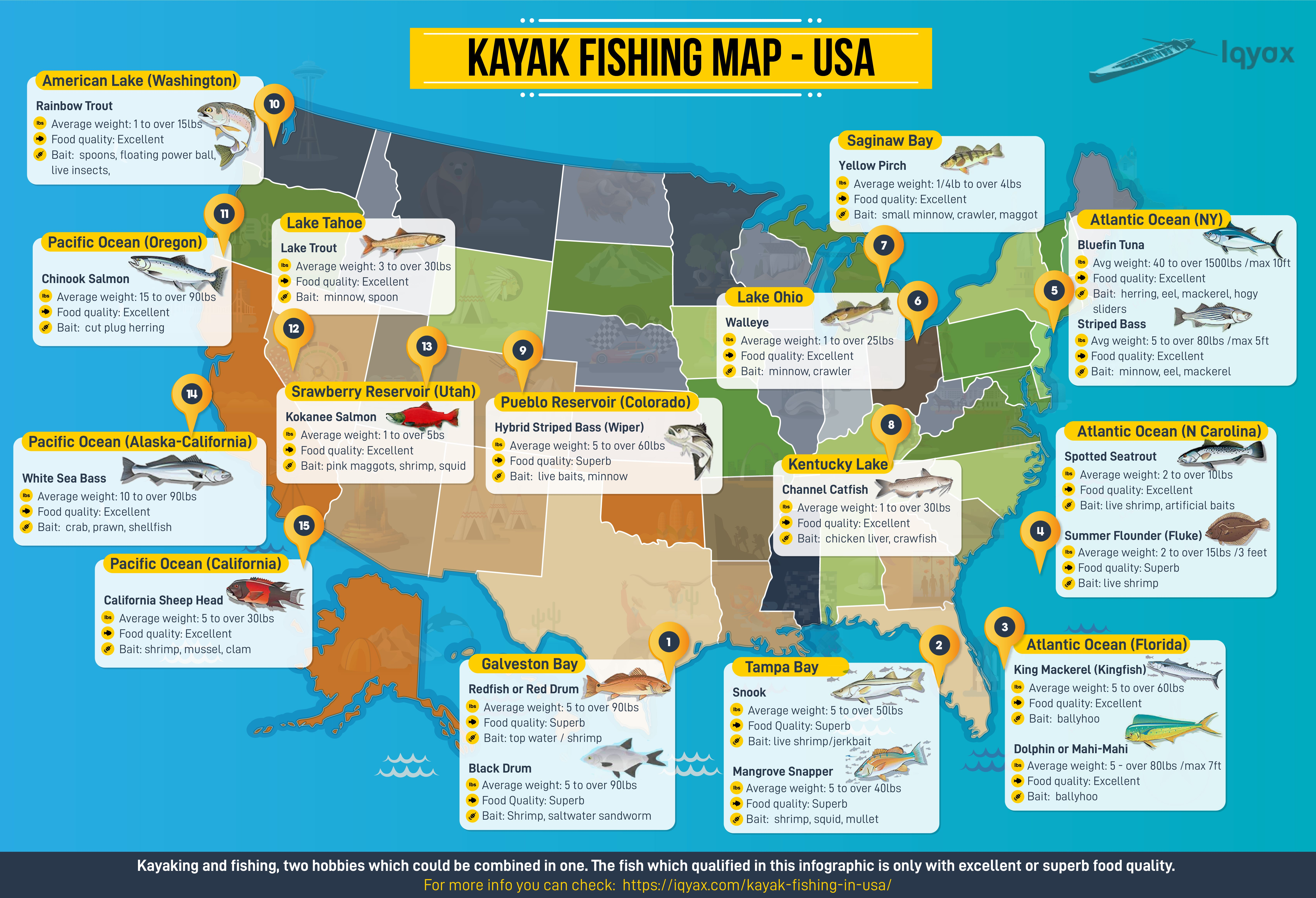The Most Delicious Fish Types In Usa Where You Can Catch Them
