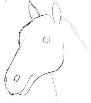 Hier Erkennen Sie Selber Wie Kann Man Ein Pferd Realistisch