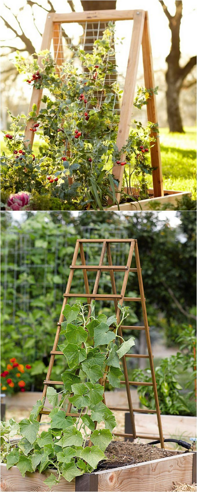 Garden decor trellis   Easy DIY Trellis u Vertical Garden Structures  Garden structures